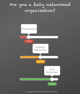 Fully Networked Organization